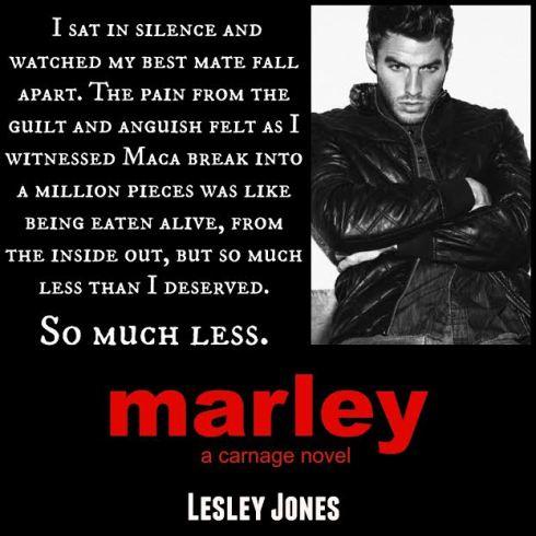 Teaser 3 Marley