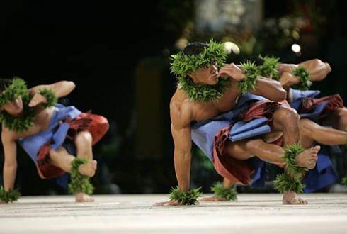 male hula 3